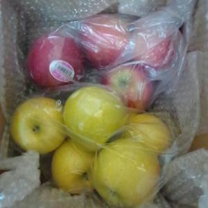 友人にリンゴを