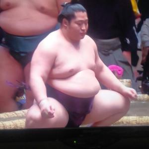 大相撲初場所 横綱不在!