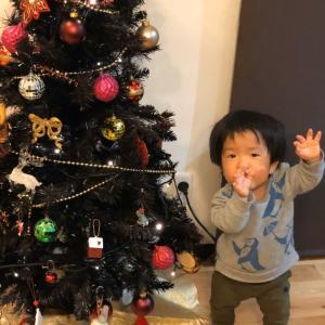 クリスマスツリーを出す!