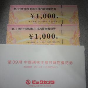 お買物優待券 ビックカメラ 2000円分