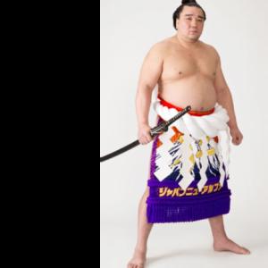 【大相撲】横綱 日馬富士、平幕 貴ノ岩への暴行で引責引退!