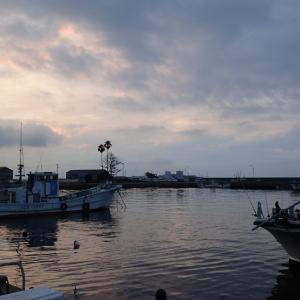 師崎よりタコ釣り調査。  2021年6月30日(水)
