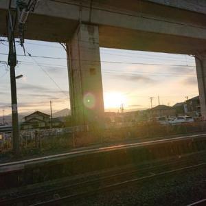 1年ぶりの築地へ #東京 #築地 #魚河岸 #海鮮 #丼