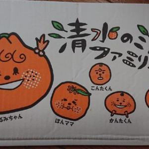 段ボール財布(JAしみず、はるみちゃん編) #段ボール #JAしみず #静岡 #はるみちゃん #段ボール財布 #ユニクロ