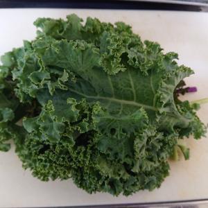 ケール #野菜 #ケール #青汁 #味噌汁