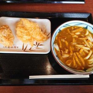 """この時期おすすめ丸亀製麺の""""カレーうどん"""" #うどん #丸亀製麺 #カレー"""