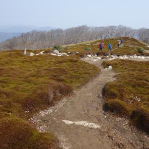 2018.4.7 イブネ・クラシ(武平峠周回) 雨乞岳を乗り越え、もこもこ苔の稜線へ