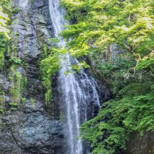 ●●★リハビリハイク箕面大滝