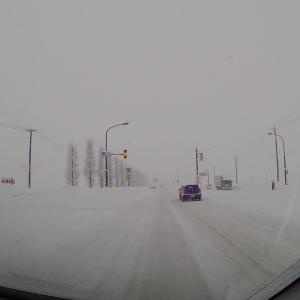 1月9日(土) 雪景色