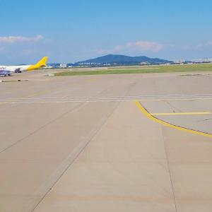 夏休みのソウル: アシアナ航空復路便