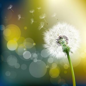 人生において、『言われてもっとも、嬉しい言葉』とは!?♡