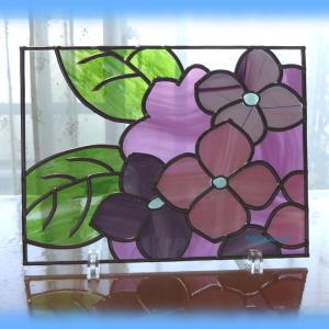 桜の予定が紫陽花に