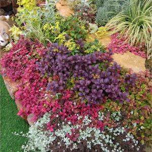 カラーリーフの花壇*ドールカスタム