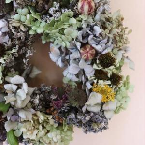 紫陽花のリースが楽しくて!3クール3日目
