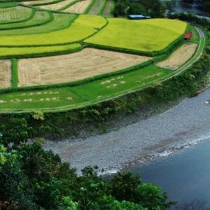 棚田景観(あらぎ島)