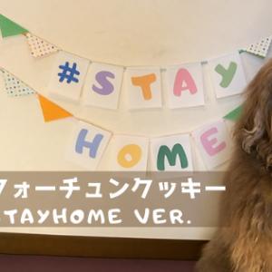 出ました!恋するフォーチュンクッキー 2020 #StayHome Ver.
