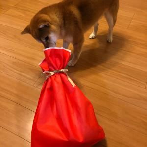 犬虎バレンタイン2020♡