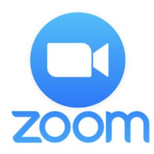 ZOOMデビュー。