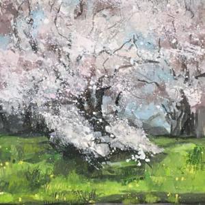 ひらひらひらひら はらはらはらはら 桜が散る