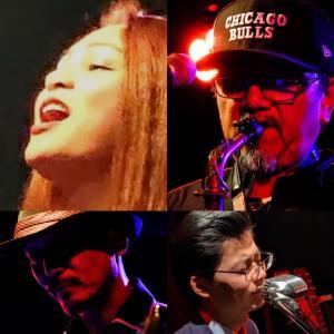 真夏の夜のライブ!