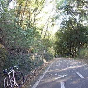埼玉県民の日に子どもと武蔵丘陵森林公園に行ってきた