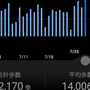 3万歩弱までがんばって歩きました