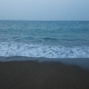 海の日 夏を感じさせてくれた1尾