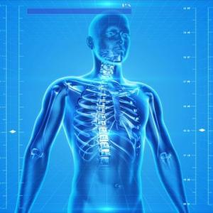 【医学部】解剖学を学ぶ上で役立つオススメ教科書・参考書8選【徹底比較】