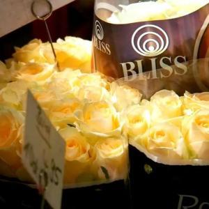 ドイツ バラの花束に思う。
