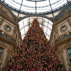 🇮🇹 本場イタリアのクリスマスツリー ・ 煌くミラノから♪