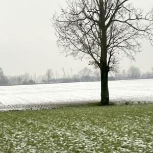 冬の北イタリア ローカル線の旅
