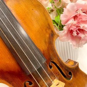 🇮🇹 イタリア クレモナ ヴァイオリン博物館 Part.3