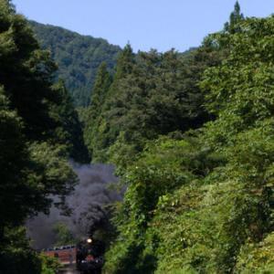 晩夏の磐西お立ち台巡りツアー(5)&我が家の鯉ちゃん達(5)