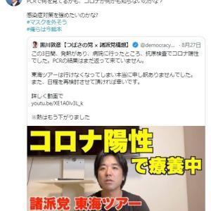 平塚正幸尊師が黒川敦彦(つばさの党)を攻撃し始めた理由を解説する