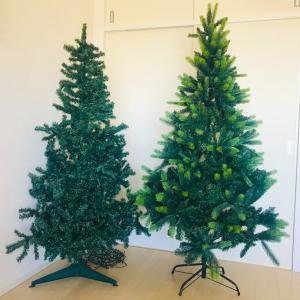 大満足‼︎新しいツリーが届く!