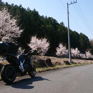 バイクで嬬恋パノラマへ