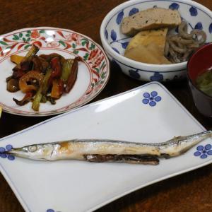 今日の晩飯「さよりの塩焼き」-久しぶりにカラオケ