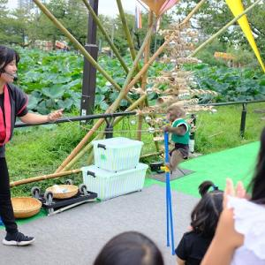 去年の今頃そして上野公園散歩