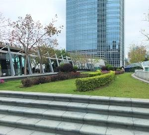 国際金融センターでピクニック@ IFC ルーフトップ・ガーデン☆Picnic at IFC Rooftop Garden In Central