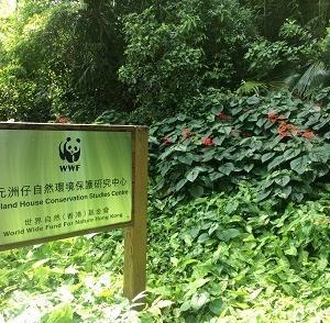 イギリス植民地時代の官邸とは?大埔にあるお宅を訪問!☆Island House Conservation Study Centre in Taipo