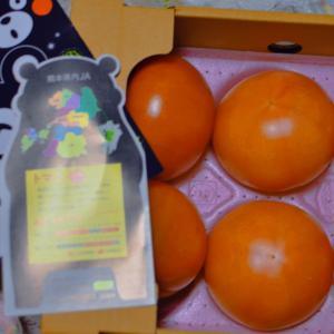 熊本県産のトマトを使ったあったか料理で 寒い冬を乗り切ろう!!