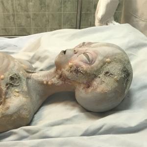 【ロズウェル】UFO 博物館に関するレポート