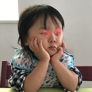 最近の娘さん(2歳7カ月〜8カ月)