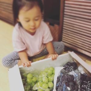 最近の娘さん(2歳10カ月)
