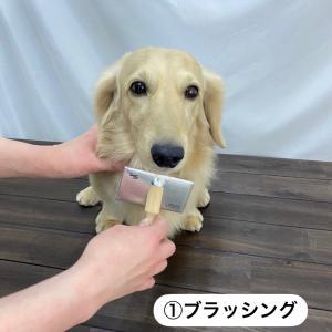 アレ☆ミッケ