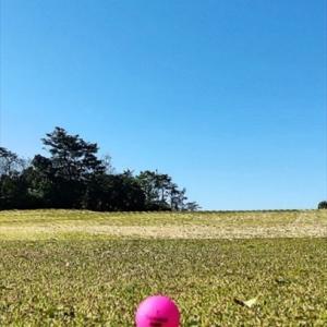 マルっと3年のゴルフ