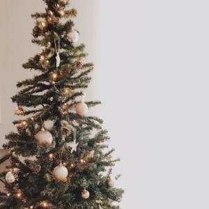 クリスマスの準備、整いました!