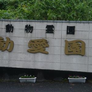 犬吉猫吉~in行橋動愛園