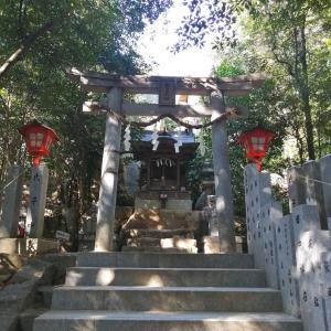 ホツマツタヱ・下照姫様から【越木岩神社】へ