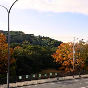 仁徳天皇陵のある堺市を散策